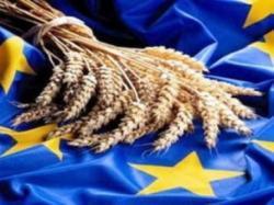 Punto 5 : FINANZIAMENTI PER ATTIVITÀ AGRICOLE E DI ALLEVAMENTO, finalizzate ai consumi nazionali interni