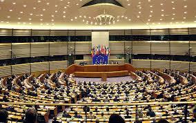 """17 cittadini """"a 5 Stelle"""" sono diventati Europarlamentari"""